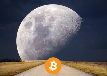 Bitcointothemoon